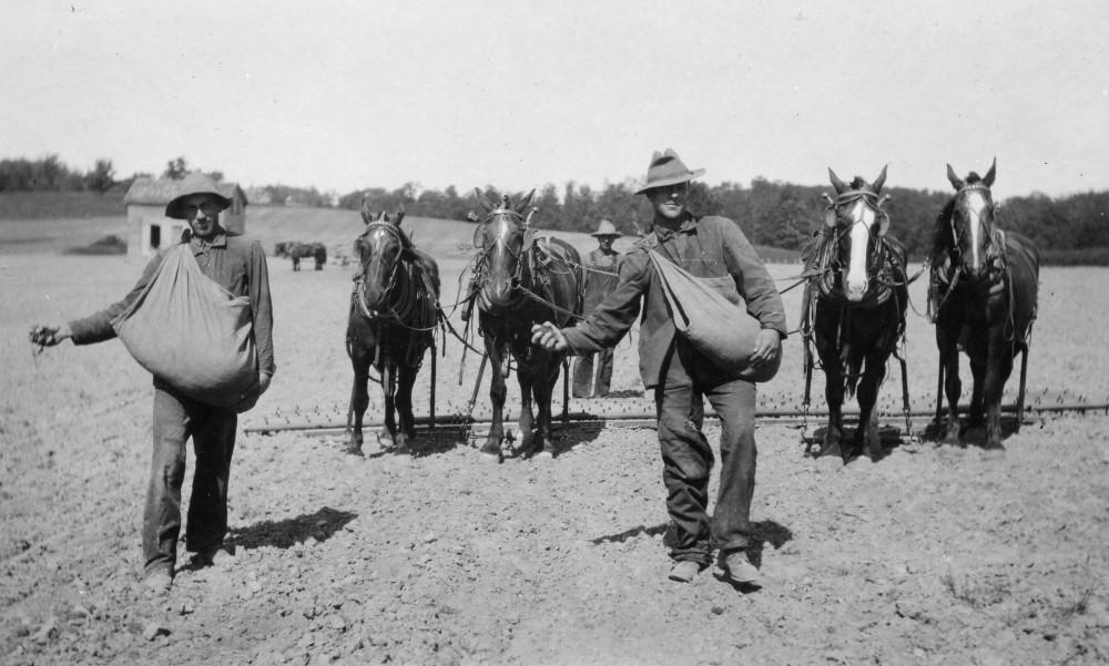 Jayson Swartz (L) and another man broadcast alfalfa seed by hand, followed by another man with a team of horses pulling a harrow.
