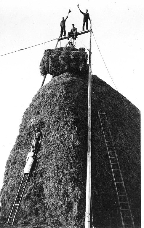 Celebrating on a finished haystack, Cornfalfa Farms, Waukesha County, Wisconsin, 1913.