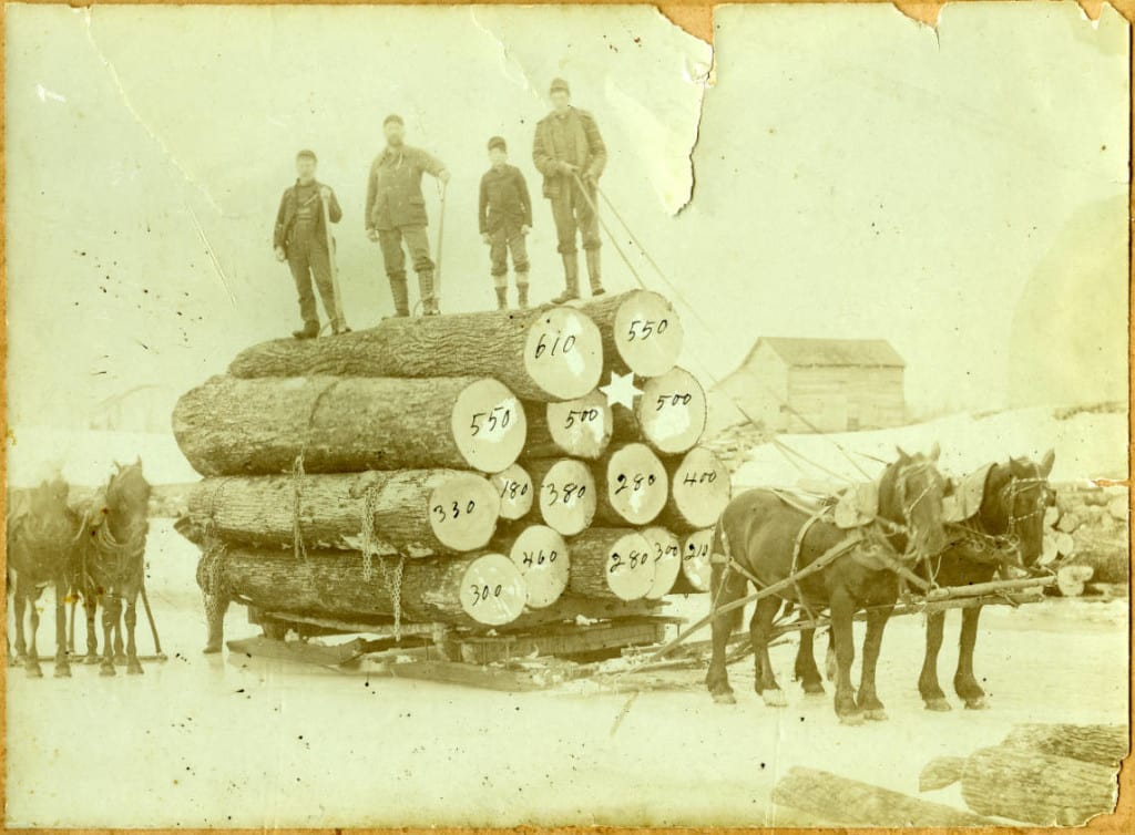 A logging crew poses on a sled pulled by a horse team. The numbers written on the logs represent the number of board feet in each log. Langlade County Historical Society.